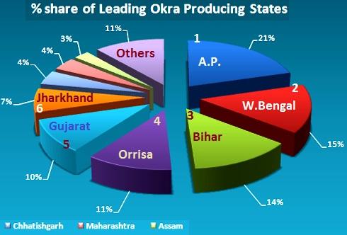 Okra in India