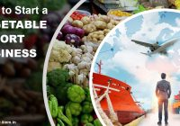 How to Start a Vegetable Export Business