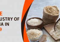 Rice Export Business