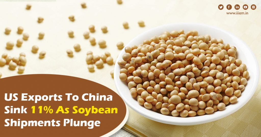 US-exports-to-China-sink-11-as-soybean-shipments-plunge